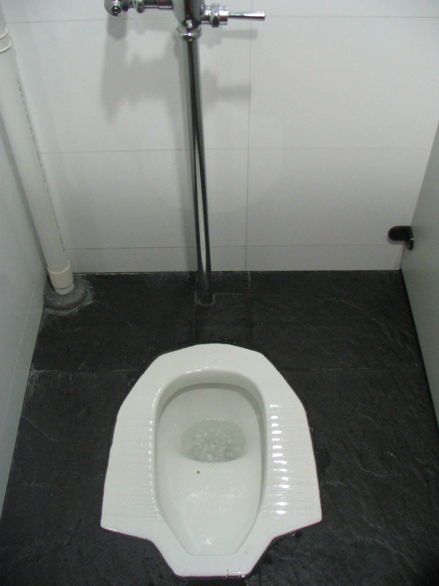 "I first ran into ""real"" squatty potties on a high school trip to Japan. We giggled amongst ourselves about the porcelain pits the Asians called toilets, and begged for a ""Western Style"" toilet any time we had to go."