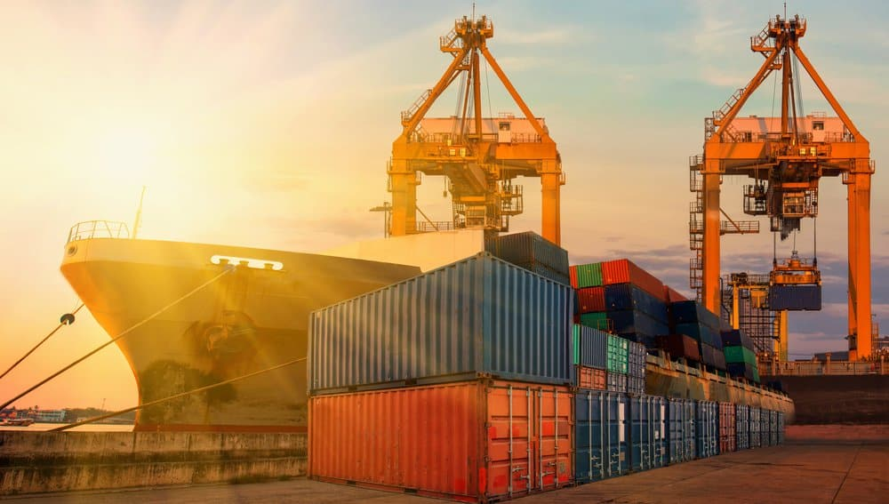 How Far Should the Shipping Industry Be Digitalized?
