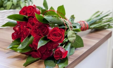Roses: Beautiful Flowers That Require Careful Logistics