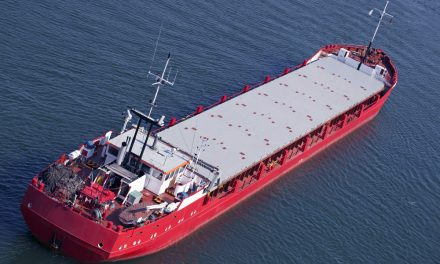 Safe Bulkers to Outfit Half its Fleet with Scrubber Installations