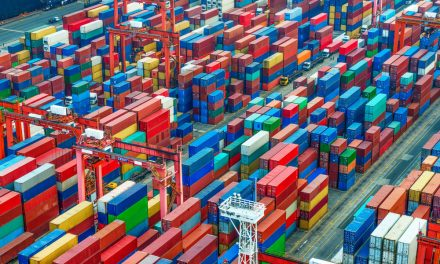 An Overview of Container Volume in 2020 vs. 2019 for Five Major Ports